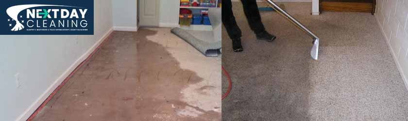 Carpet Flood Damage Toowoomba