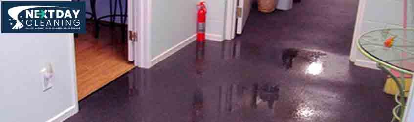 Carpet Flood Water Damage Restoration Service