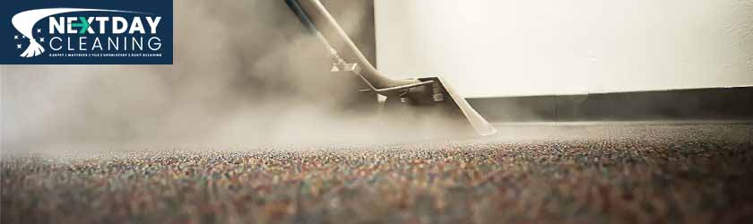 Carpet Steam Cleaning The Gap