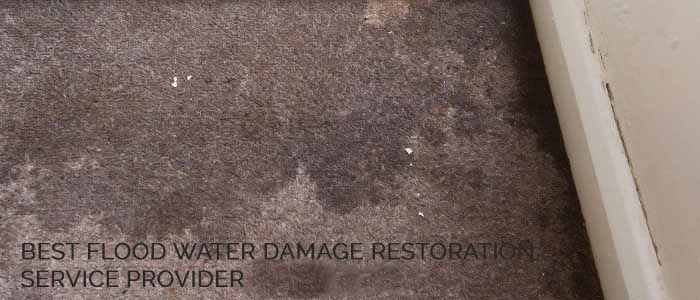 Professional Flood Water Damage Restoration Alderley