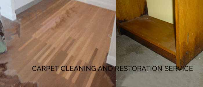 Best Flood Water Damage Restoration Service Providers in Alderley