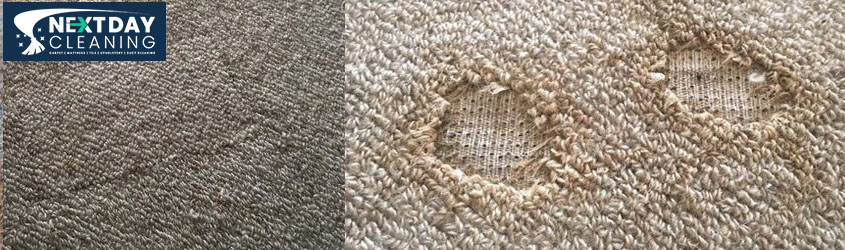 Carpet Repair Services Brisbane
